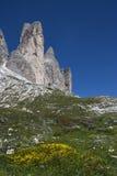 Schöner Bergblick Stockbild