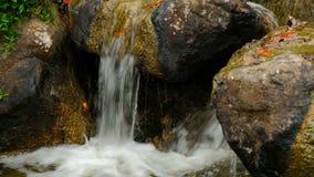 Schöner Bergwhitewaterbach Kleine Wasserfälle und Kaskaden, die über die moosigen Felsen im steilen Flussbett fallen stock footage