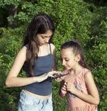 Schöner Blick des kleinen Mädchens auf etwas auf intelligentem Gerät Lizenzfreies Stockfoto