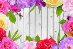 Schöner Blumenblüten- und -blattrahmen auf weißem hölzernem Hintergrund Stockbilder