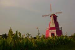 Schöner Blumengarten mit rosa winmill Stockfotos