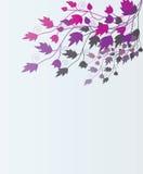 Schöner Blumenhintergrund. Lizenzfreies Stockbild