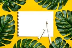 Schöner Blumenhintergrund des tropischen Baums verlässt monstera und Palme, Orchideenblume mit einem Raum für einen Text, flache  lizenzfreie stockfotografie