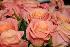 Schöner Blumenstrauß der Blumen Blumenstrauß von Rosen Stockfotografie