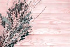 Schöner Blumenstrauß der Pussyweide und mimizy auf einem hölzernen Hintergrund Erblassen Sie - rosa Ton Lizenzfreie Stockfotos