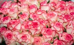 Schöner Blumenstrauß der rosafarbenen Rosen lizenzfreie stockfotografie