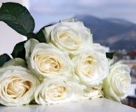 Schöner Blumenstrauß der weißen Rosen Stockbilder