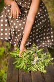 Schöner Blumenstrauß des wilden Sommers blüht in Frau ` s Händen auf einem hölzernen Hintergrund Blumenstrauß in den Händen stockbilder