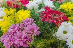 Schöner Blumenstrauß mit Gerberas, Gänseblümchen und falschen Sonnenblumen Lizenzfreie Stockfotos