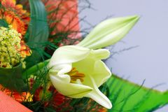 Schöner Blumenstrauß mit Lilie Lizenzfreie Stockfotos