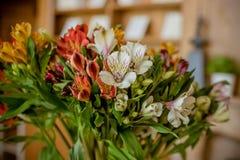 Schöner Blumenstrauß von Alstroemeria Blumenshop Blumenstrauß von mehrfarbigen Alstroemeriablumen Rosa und Purpur lizenzfreies stockbild
