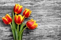 Schöner Blumenstrauß von roten und gelben Tulpen achtes Festival im März Lizenzfreie Stockfotografie