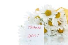 Schöner Blumenstrauß von weißen Gänseblümchen Lizenzfreies Stockbild