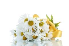 Schöner Blumenstrauß von weißen Gänseblümchen Stockbilder