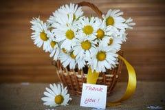 Schöner Blumenstrauß von weißen Gänseblümchen Lizenzfreie Stockfotografie