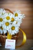 Schöner Blumenstrauß von weißen Gänseblümchen Lizenzfreies Stockfoto