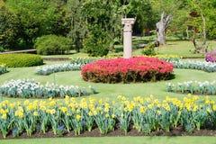 Schöner botanischer Garten Stockfotos