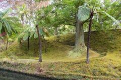 Schöner botanischer Garten von Furnas-Sao Miguel lizenzfreie stockfotografie