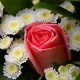 Schöner Brautblumenstrauß von Lilien und von Rosen Lizenzfreies Stockfoto