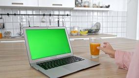 Schöner Brunette betrachtet den Laptopschirm und isst Apfelsitzen in der Hauptinnen-, jungen Frau in der zufälligen Kleidung, ist stock video