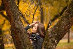 Schöner Brunette im Schal am Herbsttag Schöner Brunette, der im Baumstamm im Schal am Herbsttag aufwirft Stockbild