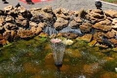 Schöner Brunnen mit dekorativen Steinen Tauben und Vögel Lizenzfreie Stockfotos