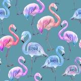 Schöner bunter Flamingo auf blauem Hintergrund Helles exotisches nahtloses Muster Adobe Photoshop für Korrekturen lizenzfreie abbildung