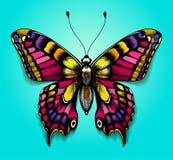 Schöner bunter Schmetterling auf blauem Hintergrund Helle Tätowierung für Ihre Rückseite Tropischer realistischer Schmetterling m Stockbilder