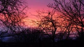 Schöner bunter Sonnenuntergang des Herbstes stockfotos