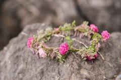 Schöner Circlet von Blumen Schöne rosa Rosen und verschiedene Blumen stockfoto