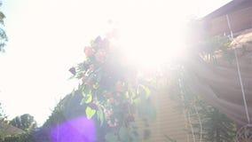 Schöner Dekor für den Hochzeitsbogen im Sommergarten Die Sonne scheint durch die Blumen stock footage