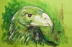 Schöner Falke auf farbiger Pappe Lizenzfreies Stockfoto