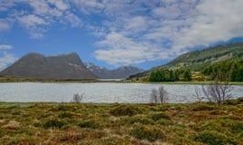 Schöner Fjord unter klarem blauem Himmel und grüner Kiefernwald in Lofoten-Insel Lizenzfreies Stockfoto