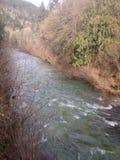 Schöner Fluss Stockbild