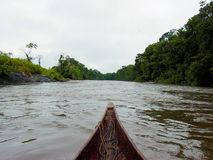 Schöner Fluss Decending im Amazonas-Wald in einem Einbaum stockfotos