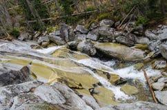 Schöner Fluss in den Bergen - hohes Tatra Europa lizenzfreie stockbilder