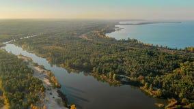 Schöner Fluss, der entlang das Waldschießen von einer Vogelschau fließt lizenzfreies stockbild