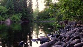 Schöner Fluss in der Sommerzeit stock footage