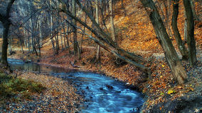 Schöner Fluss im Wald am Winter Lizenzfreie Stockbilder