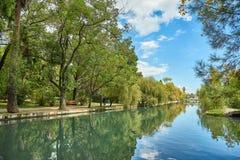 Schöner Flussdamm Grüne Bäume wachsen nahe dem Fluss lizenzfreies stockbild