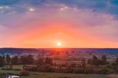 Schöner Forest On Sunrise Drastischer Himmel mit lizenzfreie stockfotos