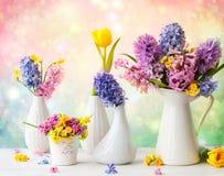 Schöner Frühling blüht Blumensträuße stockbild