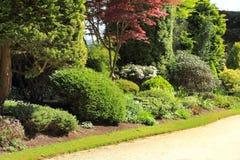 Schöner Frühlingsgarten in Schottland Stockbild