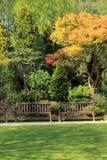 Schöner Frühlingsgarten in Schottland Lizenzfreies Stockfoto
