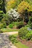 Schöner Frühlingsgarten in Schottland Stockbilder