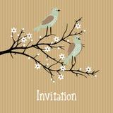 Schöner Frühlingshintergrund mit Vögeln auf Kirschblütenniederlassung, Geburtstag, Hochzeitskarte, Einladung Lizenzfreie Stockfotografie