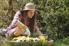 Schöner Gärtner, der um ihren Blumen sich kümmert Lizenzfreie Stockfotografie