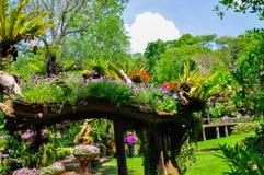 Schöner Garten Lizenzfreies Stockfoto