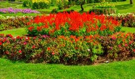 Schöner Garten Lizenzfreie Stockbilder
