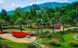 Schöner Garten Stockfoto